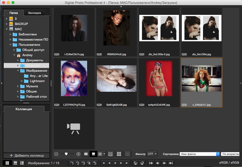 Digital photo professional 4 — скачать бесплатно на русском.